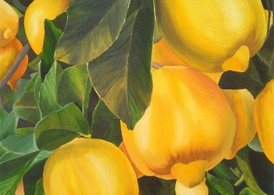 Óleo sobre lienzo 80x80 cm